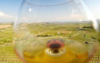 Maribor: Paradise for wine lovers, 2 days