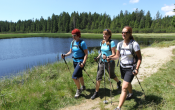 Visit the riches of Pohorje