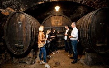 Visit and wine tasting in the Vinag Wine Cellar - for Groups