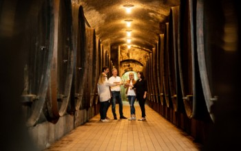 Visit to the Vinag Wine Cellar - for individual guests